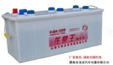 濮阳龙泉王蓄电池大功率6-qa-120s