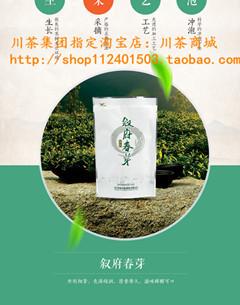 四川特产 雀舌绿茶明前炒青绿茶价格