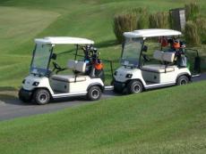 成都高尔夫球电动车 绿通观光车报价