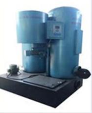 安徽生物质碳钢双胆热水炉