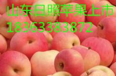 山东苹果产地 山东苹果网 山东毛桃 山东梨