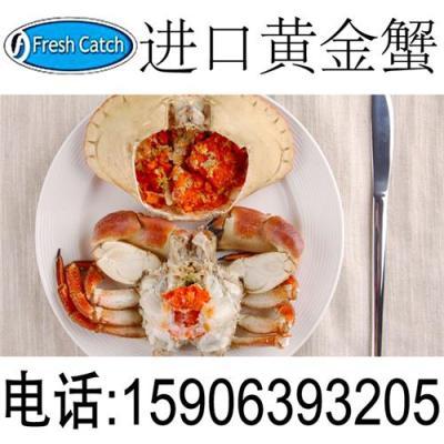 苏格兰黄金蟹 苏格兰野生面包蟹 棕蟹